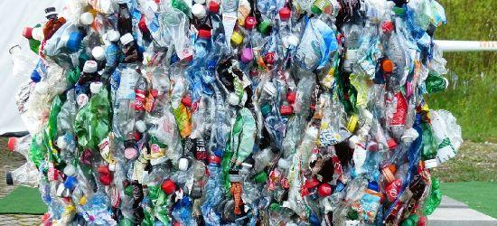 Czy radni podniosą ceny śmieci w Gminie Zagórz? Burmistrz proponuje 18 zł