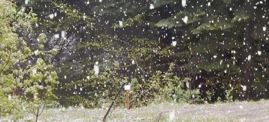 BIESZCZADY: Pada wiosenny… śnieg. Dynamika pogodowa (VIDEO)