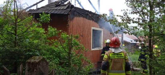 REGION. Tragiczny pożar. Nie żyje 68-latek (ZDJĘCIA)