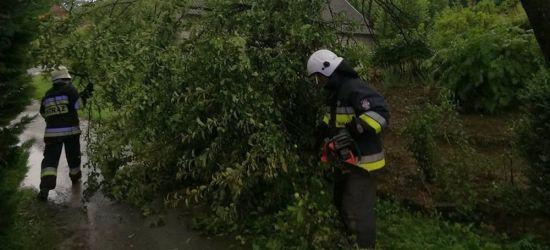 PORAŻ. Połamane drzewo zablokowało drogę (ZDJĘCIA)