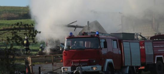 BIESZCZADY: Pożar domku letniskowego. Straty oszacowano na 300 tys. zł
