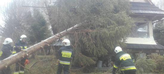 BIESZCZADY: Drzewa spadały na domy i blokowały drogi (ZDJĘCIA)