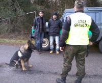 STRAŻ GRANICZNA: Psy służbowe wytropiły nielegalnych imigrantów w Bieszczadach