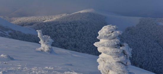 BIESZCZADY: Zima to wielka artystka! (ZDJĘCIA)