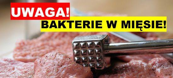 Groźne bakterie w mięsie. Uważajcie!
