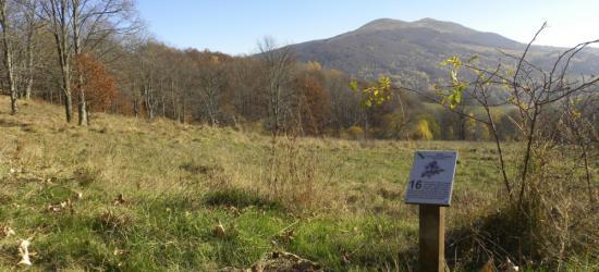 Nowe przystanki na ścieżkach przyrodniczych w Bieszczadach (ZDJĘCIA)