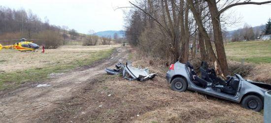 Volkswagen uderzył w drzewo. Ranny 20-latek!