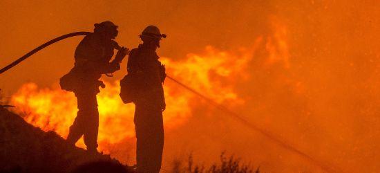 Wielki pożar w Krośnie. Siedmiogodzinna akcja strażaków