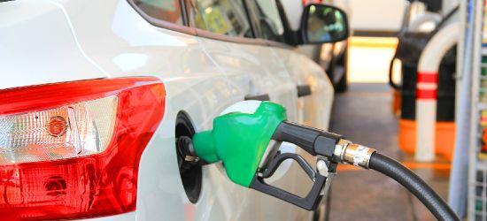 Wysokie ceny paliw w Sanoku. W innych miastach sporo taniej (FOTO)