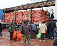 DZISIAJ: Darmowa marchewka dla mieszkańców Sanoka