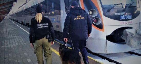 GRANICA: Nigeryjczyk z francuskim azylem wędrował do Rosji