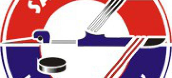 HOKEJ: WGiD PZHL zajmie się zachowaniem kibiców GKS Tychy