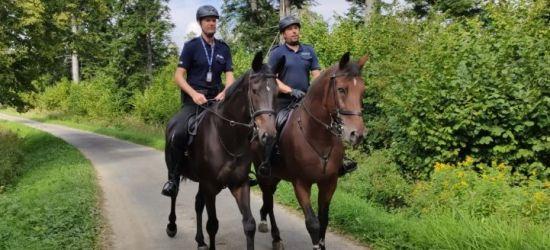 Patrole konne w Bieszczadach (ZDJĘCIA)