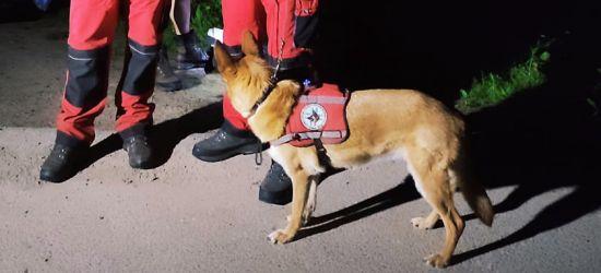 Pies odnalazł zwłoki 46-latka. W akcji poszukiwawczej uczestniczyli strażacy z Niebieszczan (ZDJĘCIA)