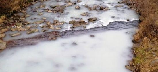 Osławica zanieczyszczona białą substancją (ZDJĘCIA)