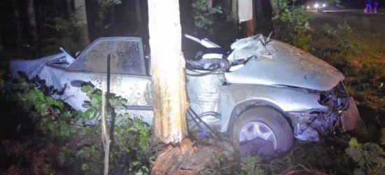 PODKARPACIE. Koszmarny wypadek. Samochód uderzył w drzewo (ZDJĘCIA)