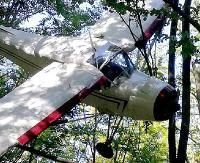 BIESZCZADY: Nowy trop w sprawie rozbitego samolotu. Czy służył do przemytu?