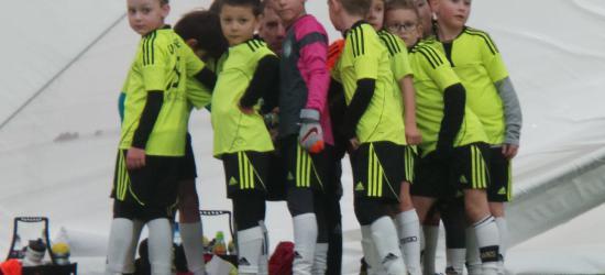 32 mecze w jeden weekend. Akademia Piłkarska Sanok w świetnej formie (ZDJĘCIA)