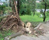 BESKO24.PL: Wichury zniszczyły wiele drzew. Trwa sprzątanie cerkwiska w Besku (ZDJĘCIA)