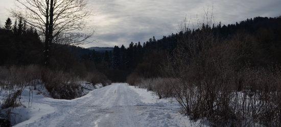 KOMUNIKAT BdPN: Sprawdzamy warunki panujące na szlakach