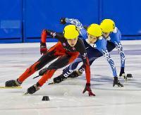 Sportowa rywalizacja w sanockiej Arenie. W roli głównej short-trackowcy (ZDJĘCIA)