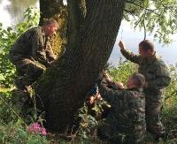 SANOK: Przyrodnicy uratowali drzewa przed zębami bobrów (ZDJĘCIA)