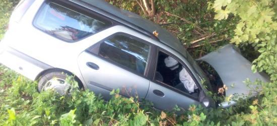 KALNICA: Samochód w rowie. Kierowca miał 3 promile alkoholu (ZDJĘCIA)