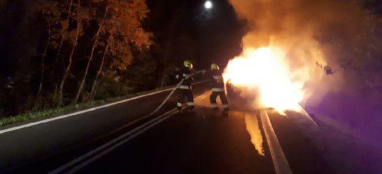 Pożar samochodu na serpentynach w Wujskiem (ZDJĘCIA)