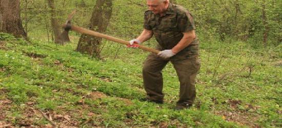 """Leśny Kompleks Promocyjny """"Lasy Bieszczadzkie"""" powiększony"""