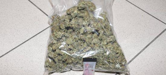 POWIAT SANOCKI: Odpowiedzą za posiadanie i uprawę narkotyków
