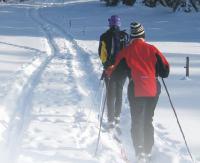 NASZ PATRONAT: Zagórz biega! Tym razem na nartach. UWAGA! ZMIANA LOKALIZACJI