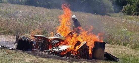 Płonąca pasieka! Tylko tak można zniszczyć chorobę (FOTO)