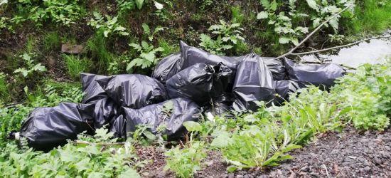 INTERWENCJA: Kilkanaście worków śmieci w dopływie Potoku Płowieckiego (ZDJĘCIA)