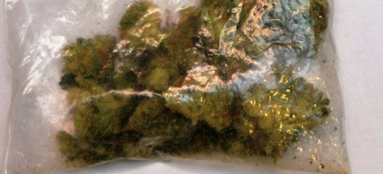 Marihuana, bursztyn i niezgłoszona gotówka (ZDJĘCIA)