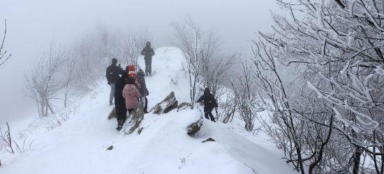 """""""Turyści wyłaniali się z mgły jak duchy"""" (FOTO)"""