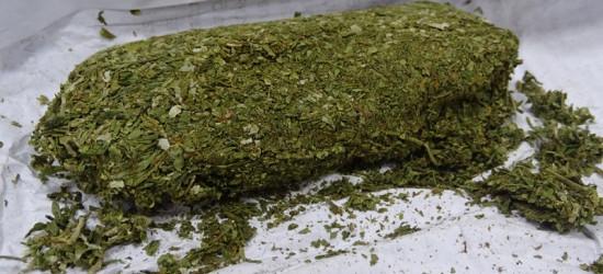 GRANICA: Przemycał marihuanę, która mogłaby odurzyć 250 osób
