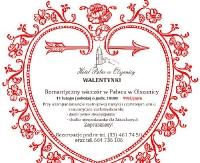 Romantyczny wieczór w Pałacu w Olszanicy