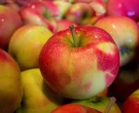 W poniedziałek znów będą rozdawać jabłka