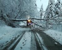 BIESZCZADY / SANOK: Ponad 7 tys. odbiorców bez prądu! Ciężki śnieg zrywa linie, łamie drzewa (ZDJĘCIA)