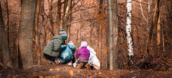 Pierwsze leśne przedszkole na Podkarpaciu! (VIDEO)