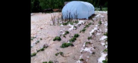 Woda niszczyła ogrodzenia, działki (VIDEO, ZDJĘCIA)
