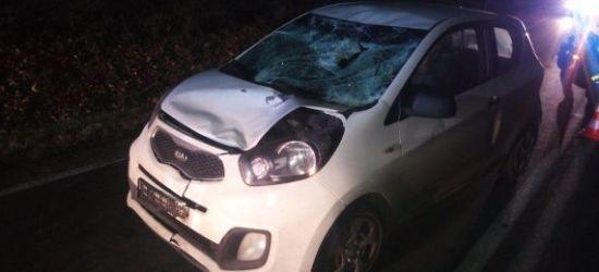 PODKARPACIE: Potrącenie na łuku drogi. Zginął 45-letni mężczyzna (ZDJĘCIA)