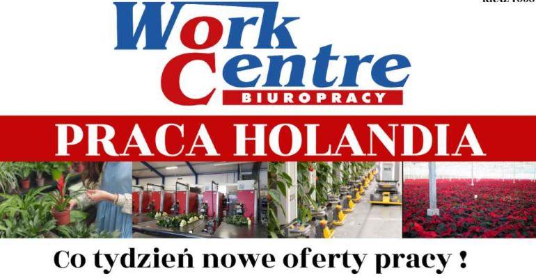 Legalna praca w Holandii na wyciągnięcie ręki
