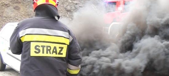 SANOK: Pokaźne siły straży pożarnej na deptaku (ZDJĘCIA)