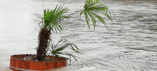 Palma przetrwała noc. Dzielnie walczy z wodą (VIDEO, FOTO)