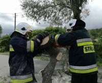 Silne wiatry dały się we znaki. Strażacy jedenaście razy interweniowali przy zerwanych dachach i powalonych drzewach (ZDJĘCIA)