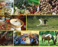 WARSZAWA / BELWEDER: Konferencja Prawdziwe Rolnictwo. Prawdziwa Żywność od Prawdziwych Rolników na tvEkologia.pl ! (RETRANSMISJA)