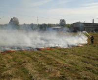 Płoną suche trawy! Strażacy mają pełne ręce roboty…