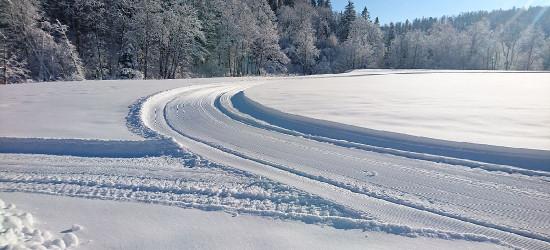 BIESZCZADY: Leśne trasy narciarskie z certyfikatem FIS