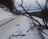 Trudne warunki na drogach. W Berezce zdarzenie z udziałem czterech pojazdów!
